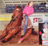 Eighteen yr old Barrel Horse for Sale